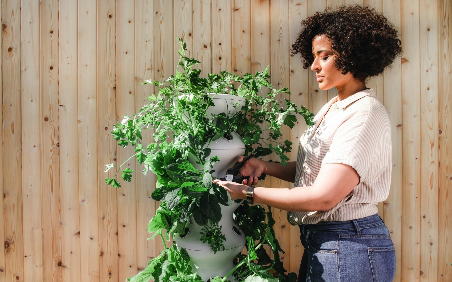 7 nasvetov za profesionalno ureditev vrta!