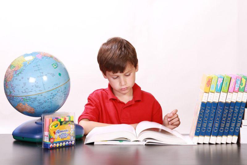Kako poteka šolanje na domu?