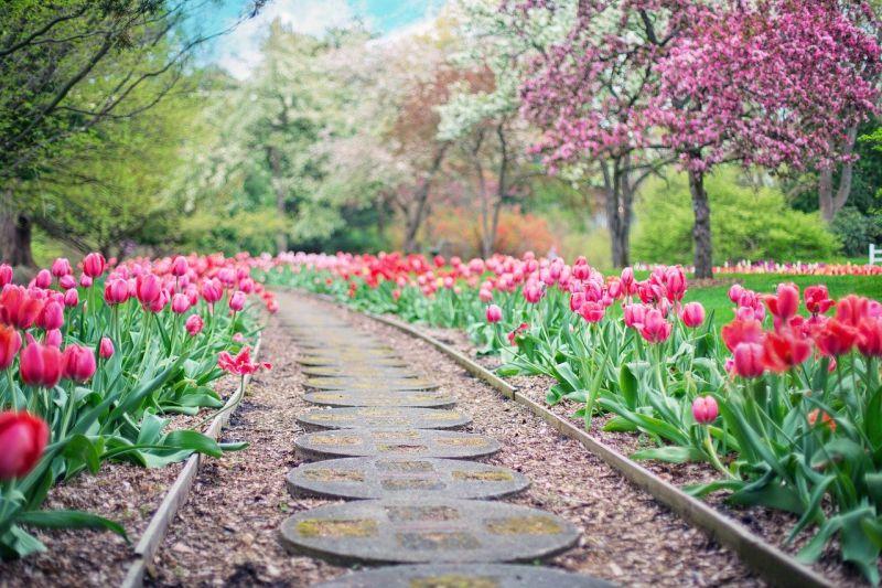 3 preproste ideje za ureditev vrta